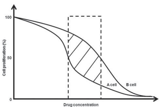 Figure 1: Theoretical concentration-proliferation inhibition curves of a drug on two different cell types